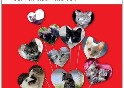 Kattenliefde-10