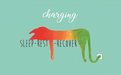 Charging-A6 ansichtkaart